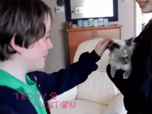 Tears Of Joy! Kids Reunited With Their Family Cat After She Was Missing For Two Months!! http://t.co/Ss3lj64Xle http://t.co/7Gj3n4lNaJ