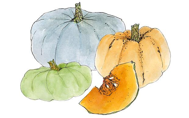 Are you craving pumpkins? Their bright colours are temping @KitchenBee... http://t.co/CmrOsqIzjH http://t.co/wal0yyR5xg