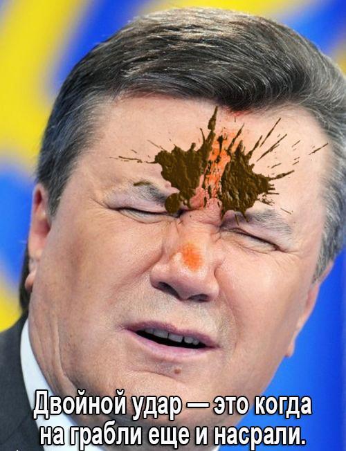 Янукович подал в Европейский суд по правам человека иск против Украины - Цензор.НЕТ 1718