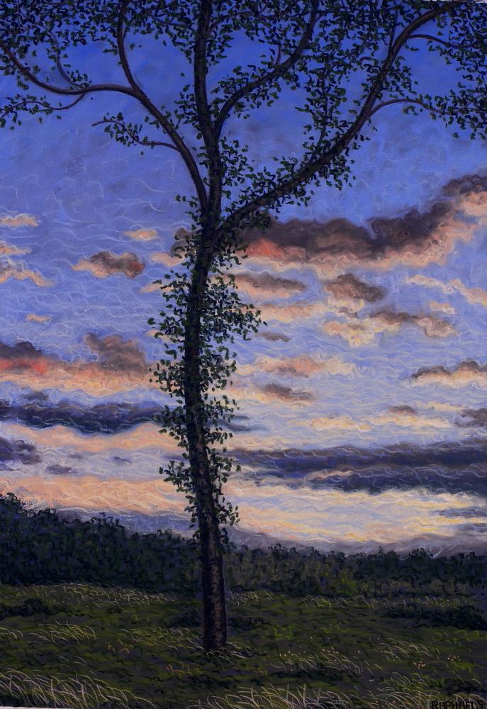 Tree at sunset, Marchiennes forest - Pastel on paper Art Spectrum. 2014 (62x40cm) #Pastel #Landscape... http://t.co/eeZCKap2GL ~@Seygnovert
