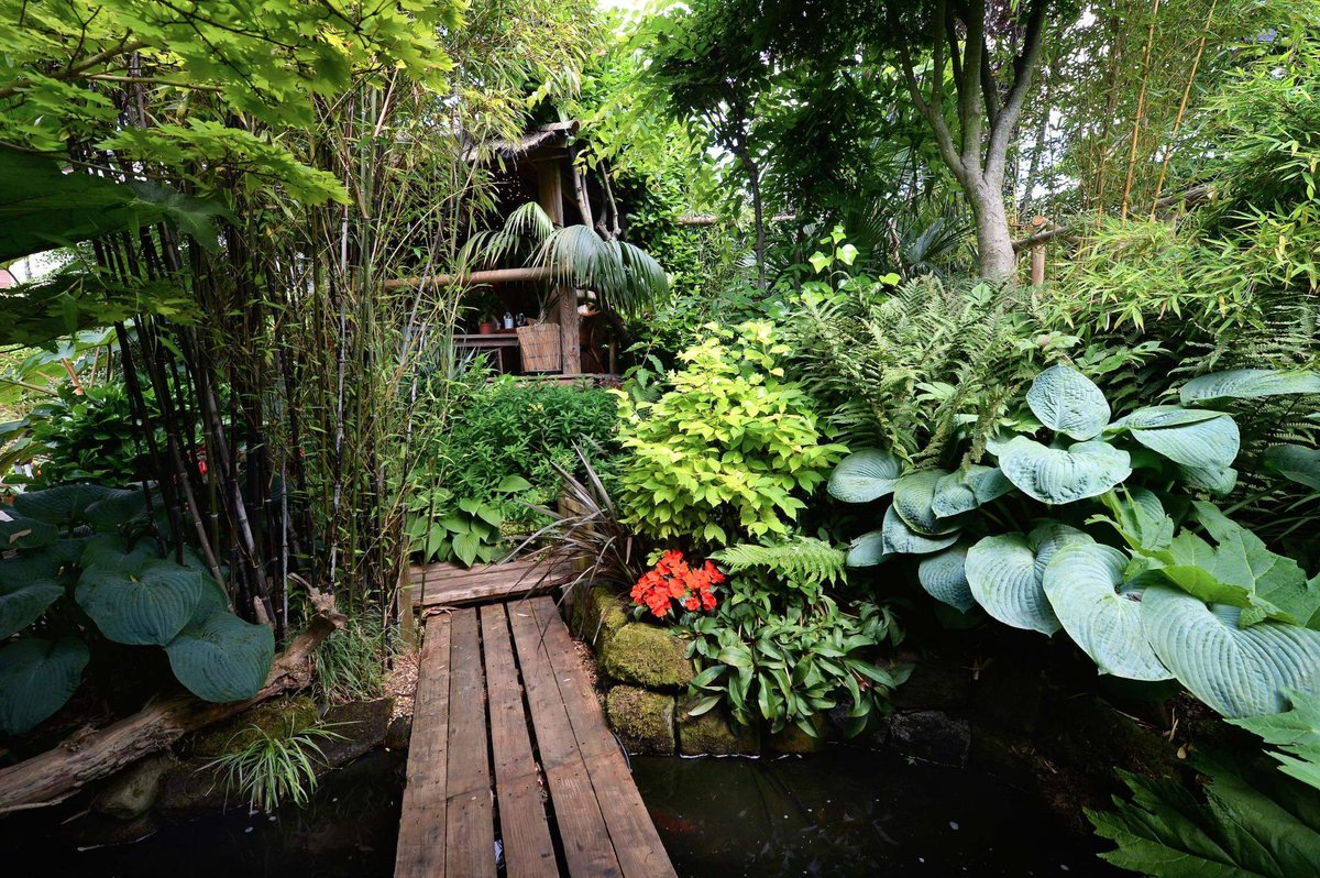 Jungle Backyard Ideas : your own junglegarden? @queenofspades00 + @FlowerdewBob have ideas