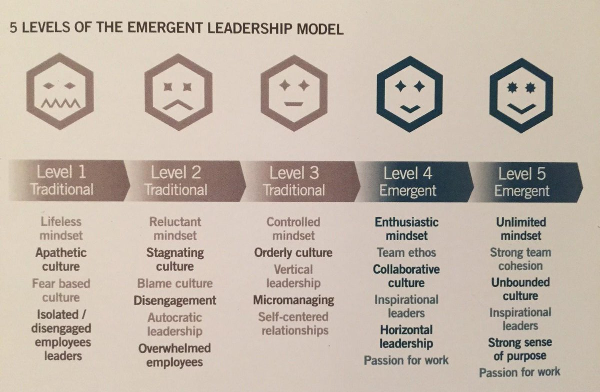 assigned leadership and emergent leadership