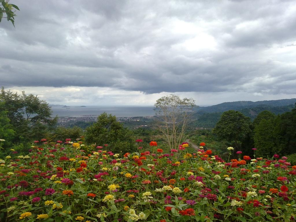 Alam Wawai Ecopark