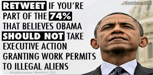 NEW POLL finds 74% of those who voted Tues REJECT Obama's executive amnesty!  RT if you agree with them  #immigration http://t.co/cs4B3hUrGz