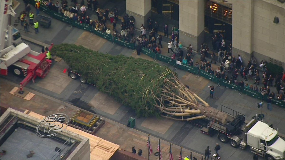 LOOKING LIKE CHRISTMAS: Rockefeller Center tree arrives in NYC - http://t.co/VIYHTQmXR1 http://t.co/BVZIRD3Dhs