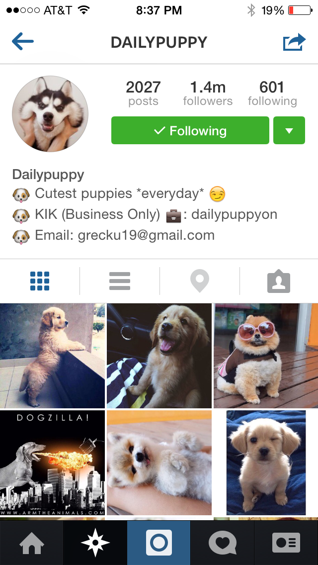 This might be the best/cutest decision I've made all day. #dailypuppy #instacute http://t.co/imusMxoR6p
