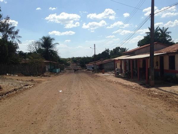 Belágua Maranhão fonte: pbs.twimg.com