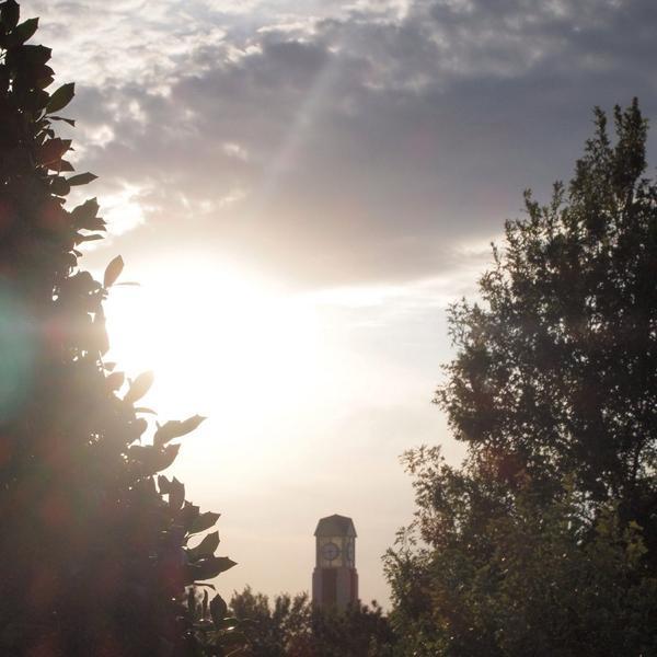 Rachel McLemore tower pic