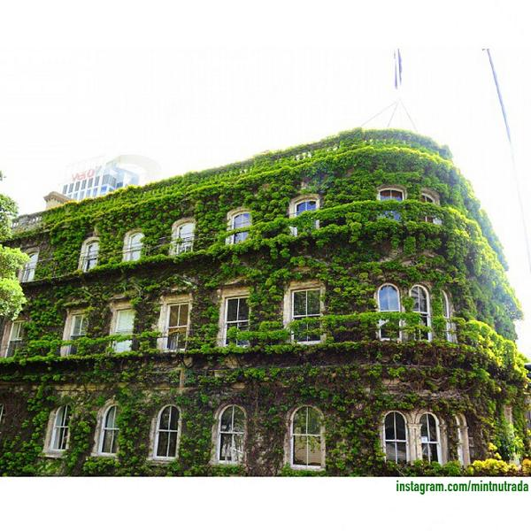 Have you ever seen a beautiful building like this? We found it in Auckland! Repost from  Instagram : mintnutrada http://t.co/EF0QeDtUjh