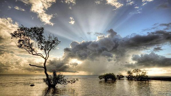 Saluto il sole, respiro, ascolto e lascio andare, a beneficio nostro e di tutti gli esseri in ogni universo