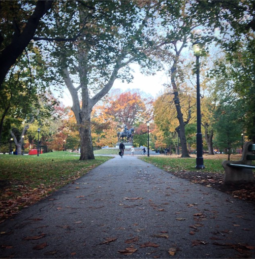 Strolling across Queen's Park is one of the most beautiful ways to get to Hart House. RT if you agree! http://t.co/WcVQ15wIMN
