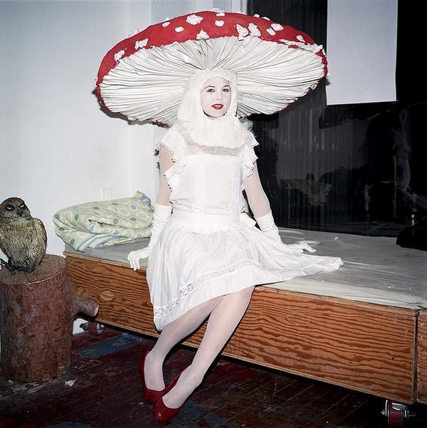 fantastic fungi on twitter mushroom halloween costume ideas fantasticfungi httptcoxvohg3lx8a httptcozxygaxpz5m