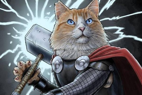 Here are cats dressed as Marvel superheroes because National Cat Day is a real thing http://t.co/59jTbfamrZ http://t.co/F3e4arlVcf