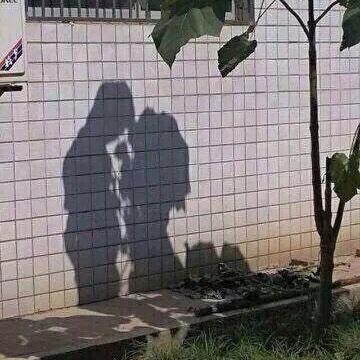 木の影ですらリア充してるのに俺たちといったら……