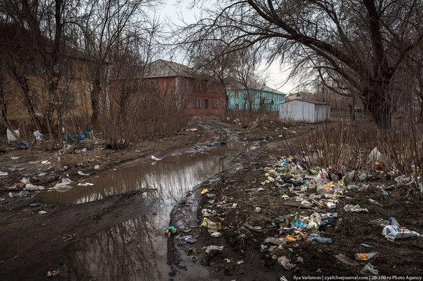СБУ задержала на Днепропетровщине пособника террористов, организатора антиукраинской пропаганды - Цензор.НЕТ 2168