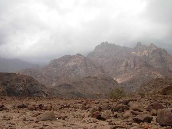 صور ومعلومات عن جبل رضوى B1RrK3ECYAM3_2d