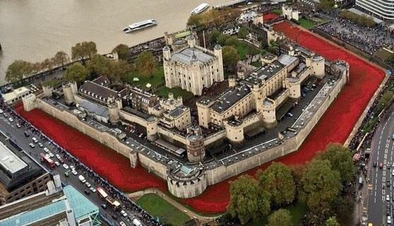 Tower of #London surrounded by over 800000 ceramic poppies this #RemembranceSunday (photo via @Charles_HRH) http://t.co/tbt1vvc8fK
