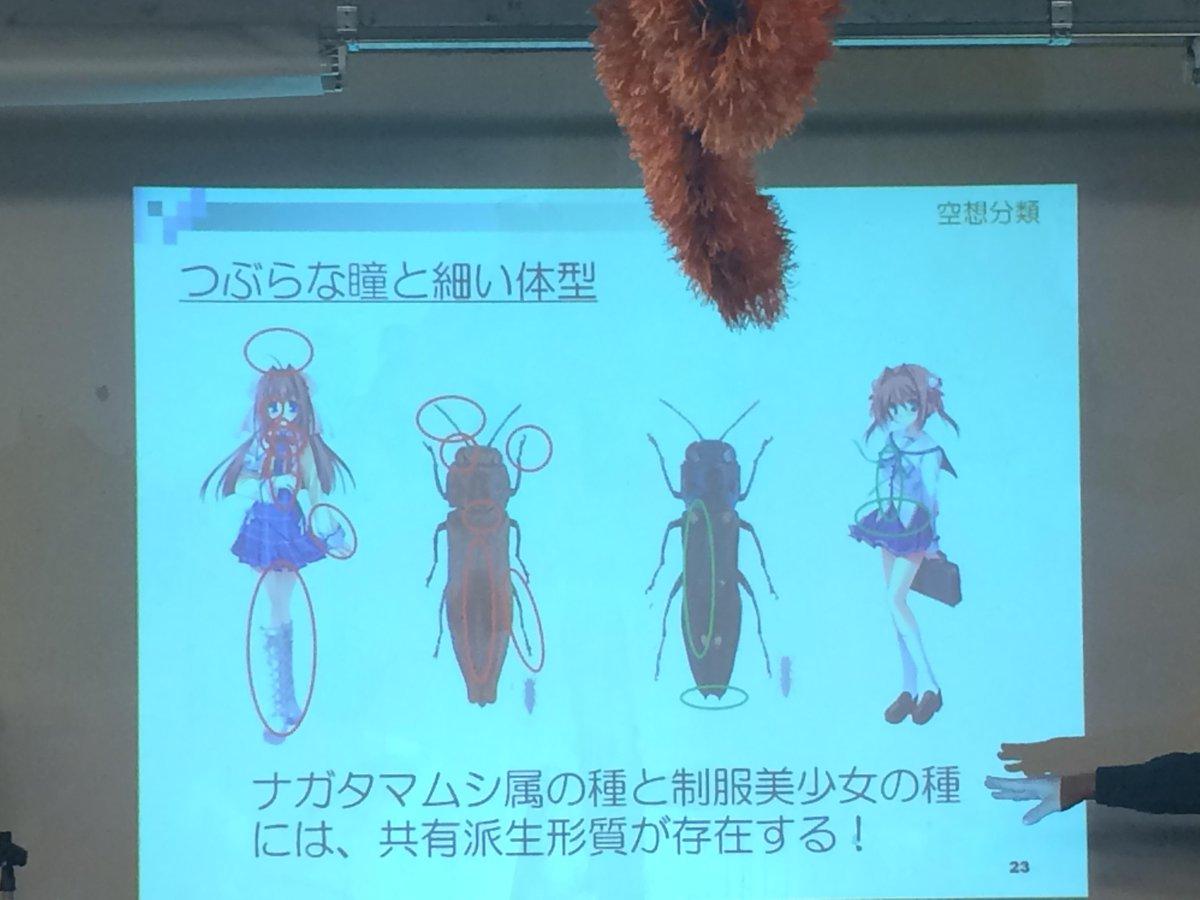 昨日一番反応あったの、これ RT @yumu19: 何 を 言 っ て い る ん だ #昆虫大学 http://t.co/xLxdNhGYIi