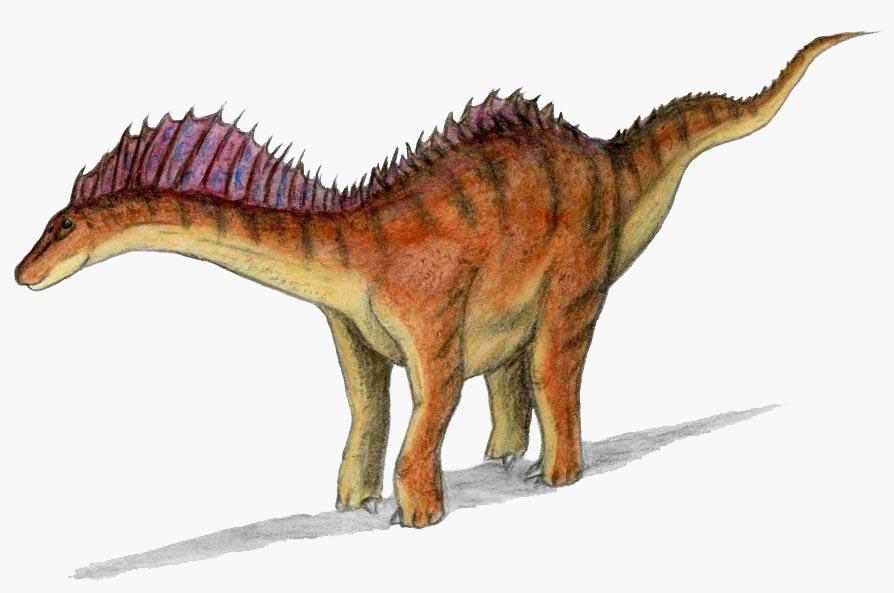 アマルガサウルス http://t.co/tZim6k6hD6 http://t.co/lsxYKAdBJP