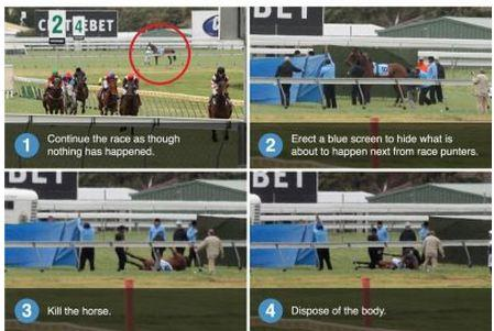 What the racing industry doesn't want you to notice today #MelbourneCup #horseracingkills #horseracing http://t.co/Y8PkzvlZL4