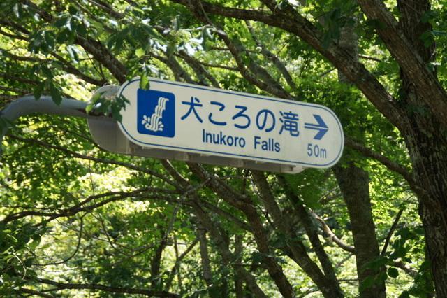 長野県の「犬ころの滝」って滝、名前が最高じゃないですか pic.twitter.com/nViuuEpPHJ