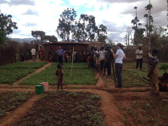 We drew a bit if a crowd whilst filming in a Dodoma region village. #cabi_news http://t.co/suLcaUUPkE
