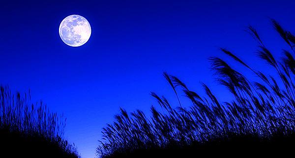 本日は11月5日は、一生に一度の171年ぶりの名月『ミラクルムーン』(十三夜の月)がみられます!是非、本日の夕方頃から空を見上げてみて下さい!この一生に一度のチャンス!東京は残念ながら曇り予報ですが、もしかしたら見られるかもしれません pic.twitter.com/Y5MldYGwjo