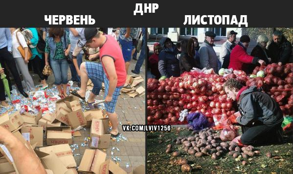 Украинские пограничники задержали сообщника террориста Безлера - Цензор.НЕТ 6697
