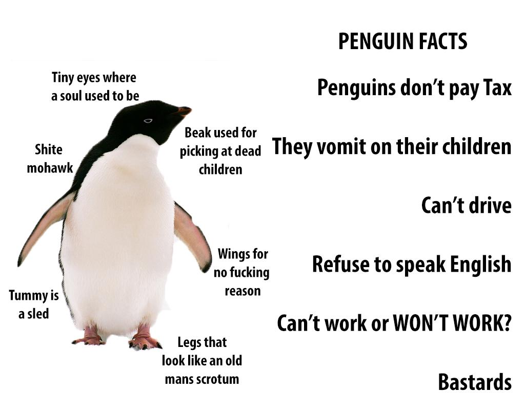 Ha! - RT @TechnicallyRon It's easy to think Penguins are cute, but what are the real facts? http://t.co/r2xnHvaENK