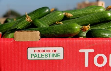For the 1st time since the closure: A truck of cucumbers left #Gaza for sale in the #WestBank http://t.co/p5dL4xG5fM http://t.co/zrFR8fXFwa