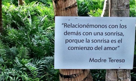 Mensajes inspiradores en los árboles d @sivorypuntacana #EnCuerpoyAlma2014 @stodgotimes @shine_rd @gestur_rd http://t.co/4jupN4wvHY