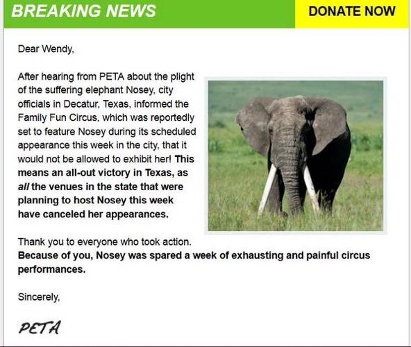 VICTORY! #Nosey the Elephant spared a week of exhausting and painful circus performances. MT @saudade70 #ActForNosey http://t.co/4v1v44f5Zg