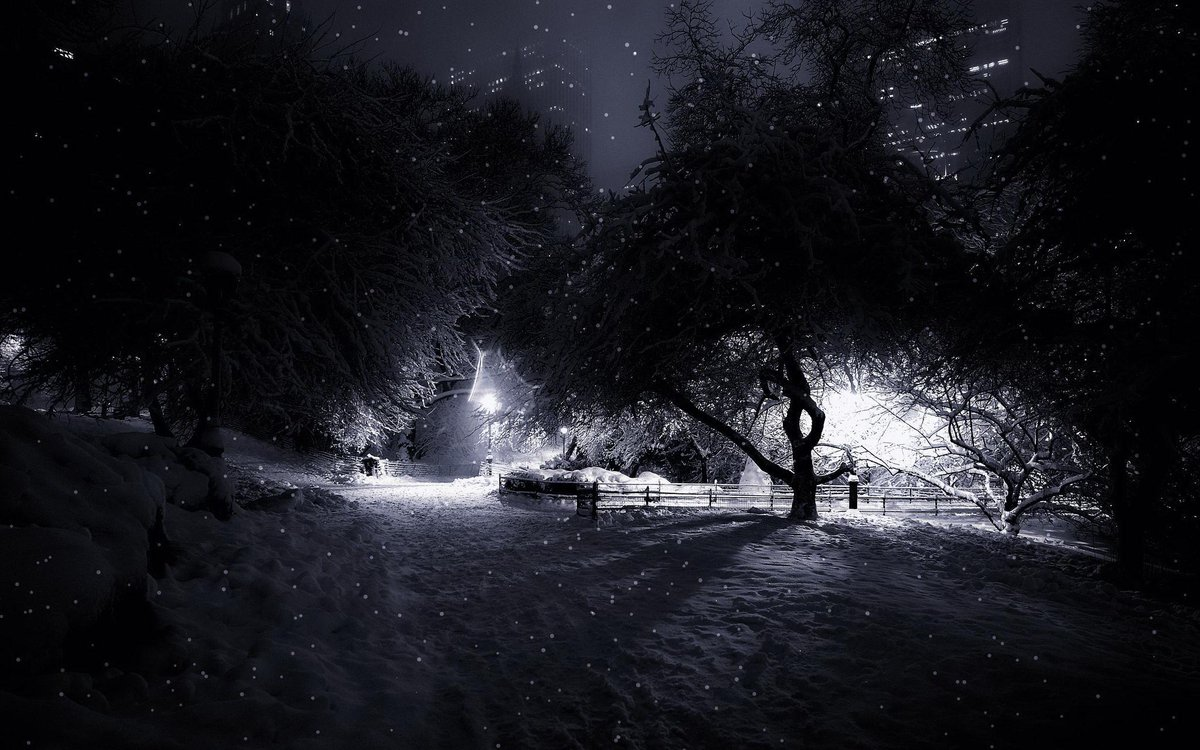 #Centralpark, #Manhattan #NYC https://t.co/PwMF12Dr74 http://t.co/HEMjRSNfEa