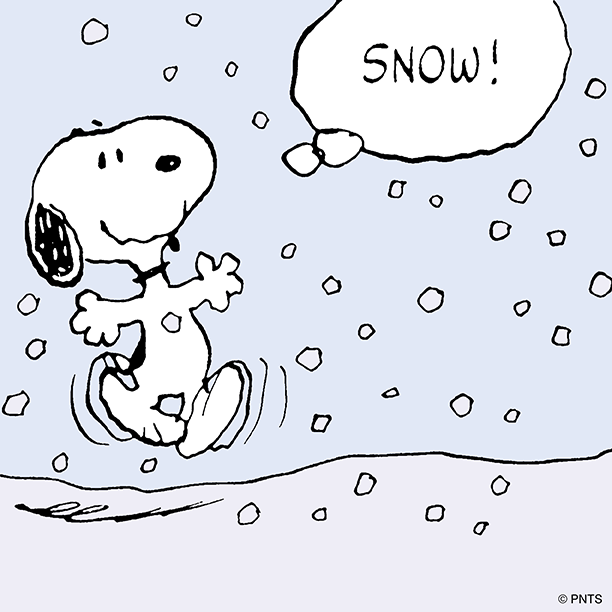 Image result for Snoopy snow