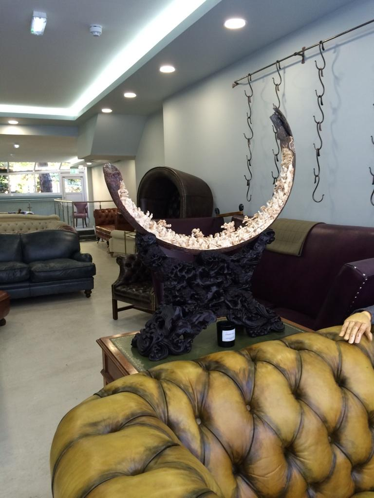 mammothivory хаштаг в Twitter