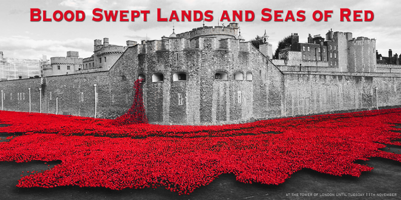 Thumbnail for Tower Poppies