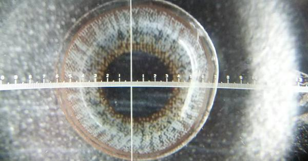 スポットライトグレーの着色直径測定画像