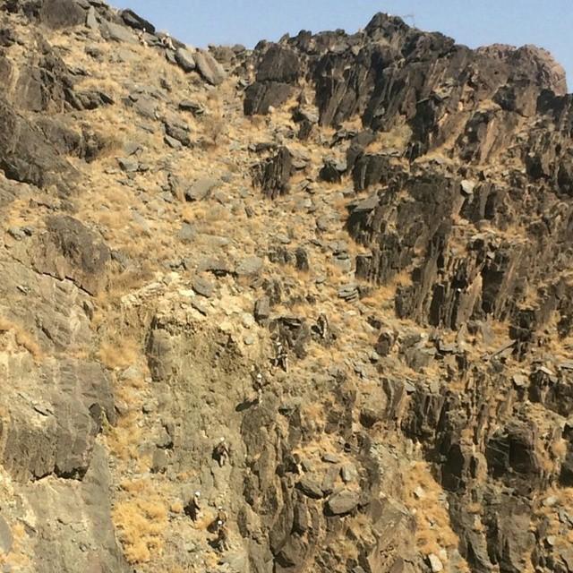الموسوعه الفوغترافيه لصور القوات البريه الملكيه السعوديه (rslf) - صفحة 27 B2ONo2OCIAA_dAf