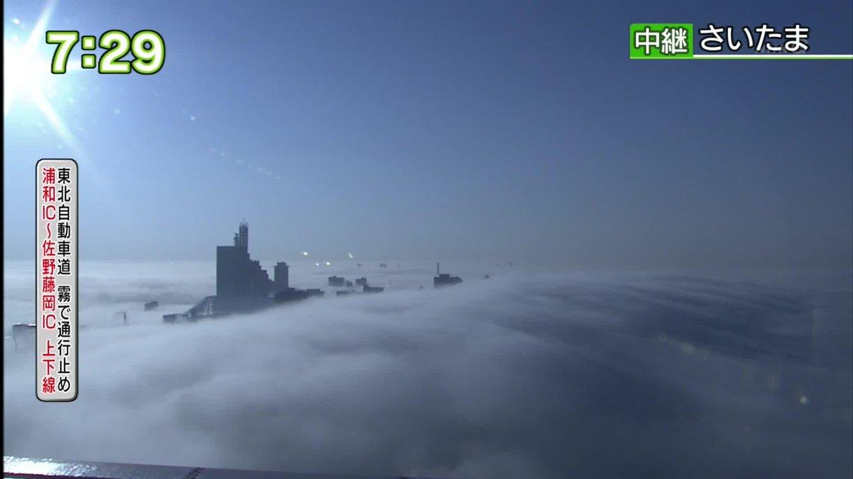 現在のさいたま市の様子らしい。放射霧と呼ばれる現象。 http://t.co/IuCKagbViW