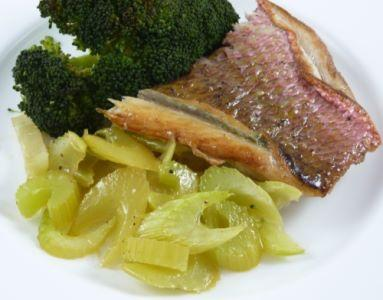 Food combining diet foodcomb twitter with celery and broccoli httpfood combining dietrecipes protein recipes with sea foodprotein red snapper filet with celery and broccoli forumfinder Choice Image