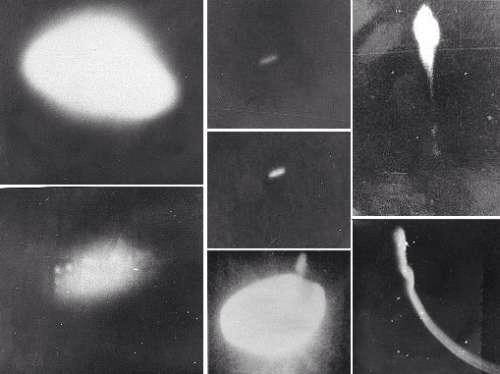 Attacco UFO all'Isola Corales Rio delle Ammazzoni in Brasile, era il 1977