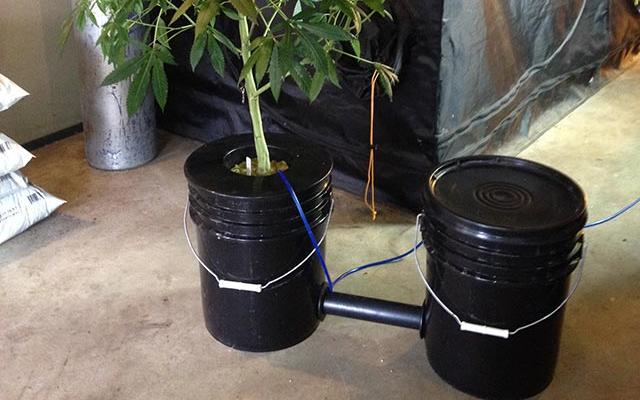 high times on twitter how to build a two bucket dwc system. Black Bedroom Furniture Sets. Home Design Ideas
