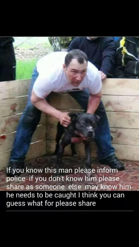 This HAS to STOP!!! Disgusting, Inhumane and Cruel! These poor dogs get made to fight to save themselves! Please RT! http://t.co/qAjoMyB1r2