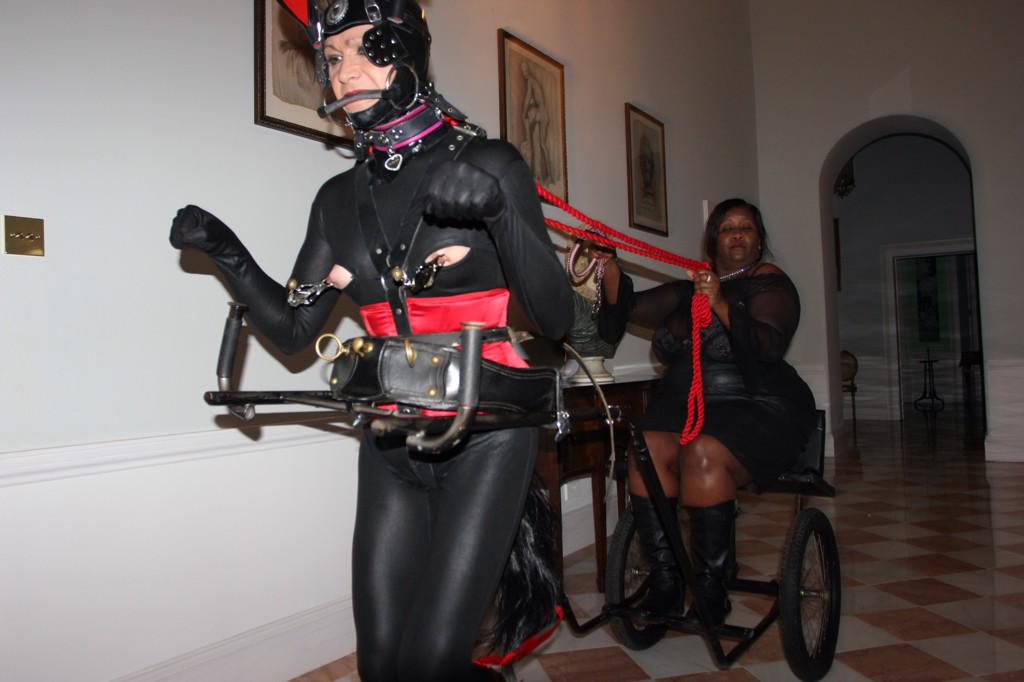 Asian Strap On Mistress - Other-8812