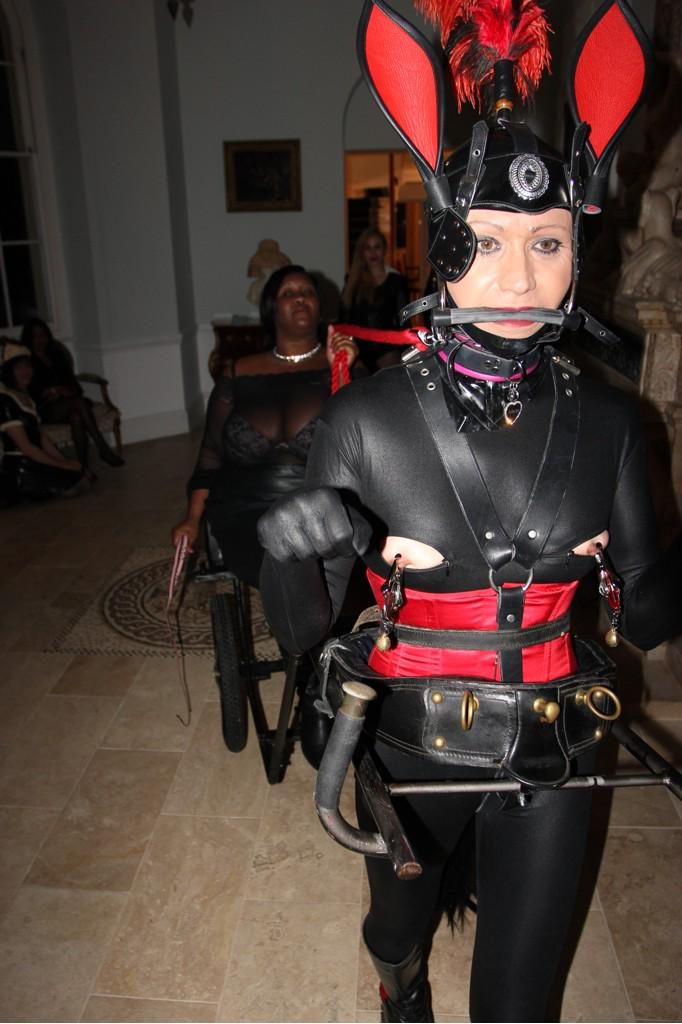 """pet miw-sher on Twitter: """"#PonyGirl ride for the # ..."""