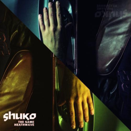 Le légendaire CL Smooth qui rejoint @mr20syl sur un track de @shukoshuko ça donne ça ! #hiphop http://t.co/KEsDYCUKF7 http://t.co/iB7i5U7H6t