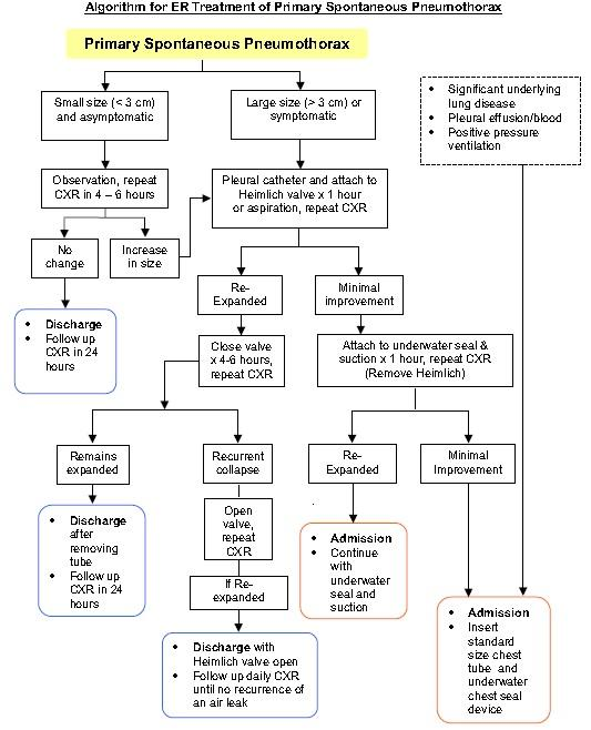 Thx for sharing! RT @ETtube: Here's our algorithm for primary spont pneumothx. @M_Lin @HeatherM211 http://t.co/N2ca4iR2fC #ALiEMJC