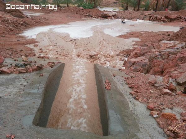 صور أمطار المدينة المنورة اليوم الاثنين 24-1-1436