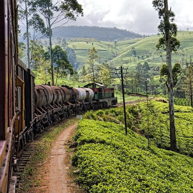 Going around the bend in hill country. Train travel in #srilanka is the best way to see ... http://t.co/fxojbHaBHS http://t.co/HHHVaxUUvU