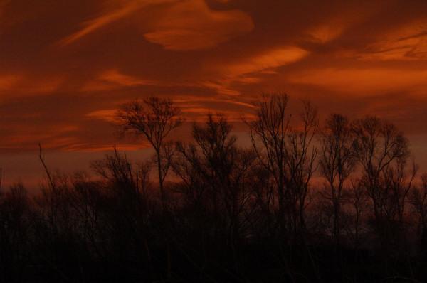 """Astonishing Sunrise Photo """"Fire Sky"""" https://t.co/0CZj4Cqpxw #ArtPhoto https://t.co/gasNZIKgmj"""